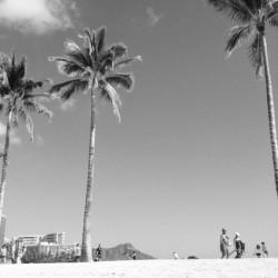 hawaii [ALOHA]